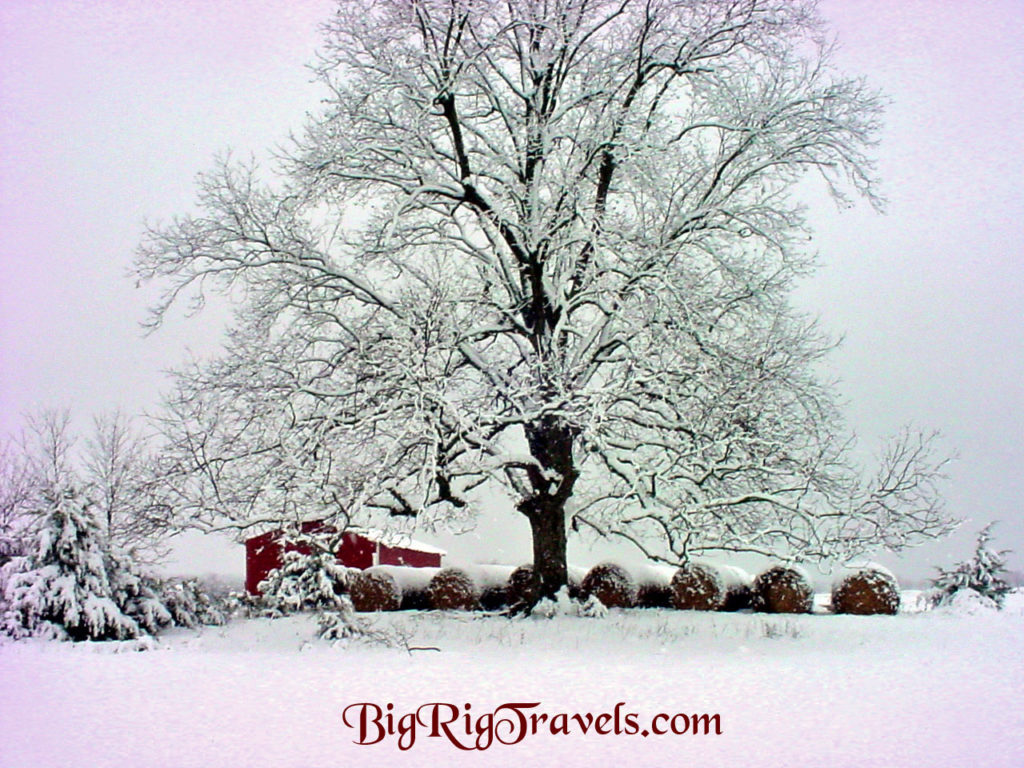 Farmersville, Texas barn and tree in heavy snow